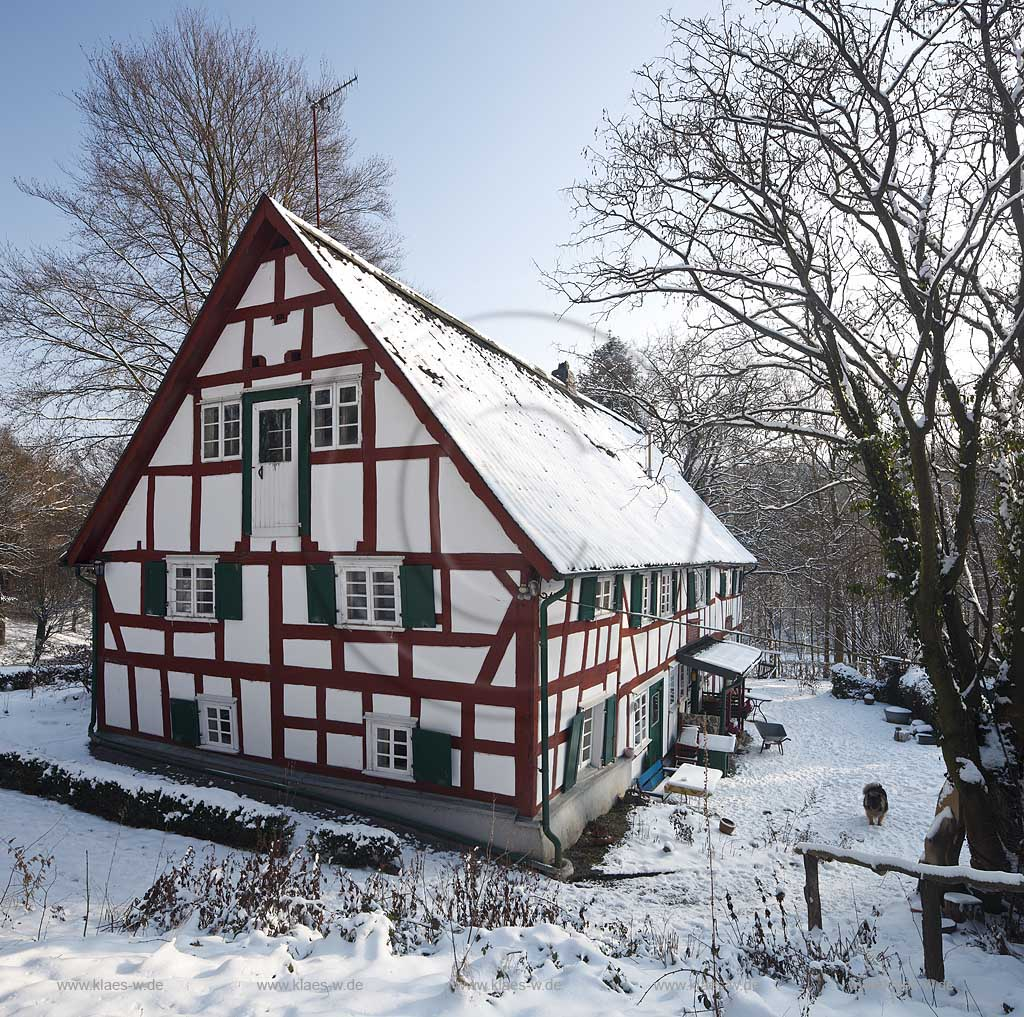Waldbroel Drinhaus historisches Fachwerk Bauernhaus im Winter verschneit mit rotbraunem Fachwerk; historical half timbered house in Waldbroel Drinhaus in winter snow covered
